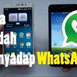 Cara Sadap WhatsApp Orang Lain Dengan Mudah