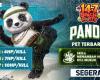 pet panda ff dan kelebihannya
